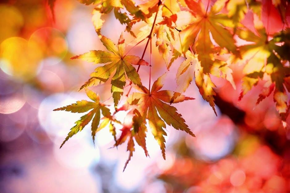 秋冬に肩こりが強くなる?